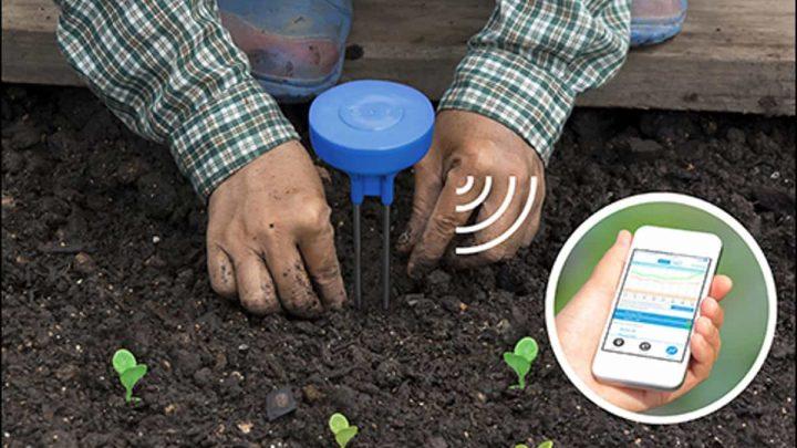 Sensoterra e Kerlink rilasciano una soluzione IoT per il monitoraggio dell'umidità del suolo